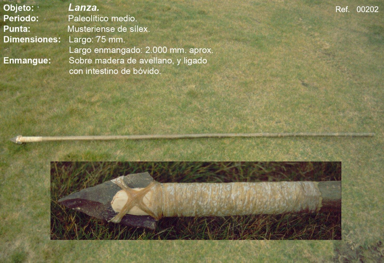 00202 Lanza neanderthal
