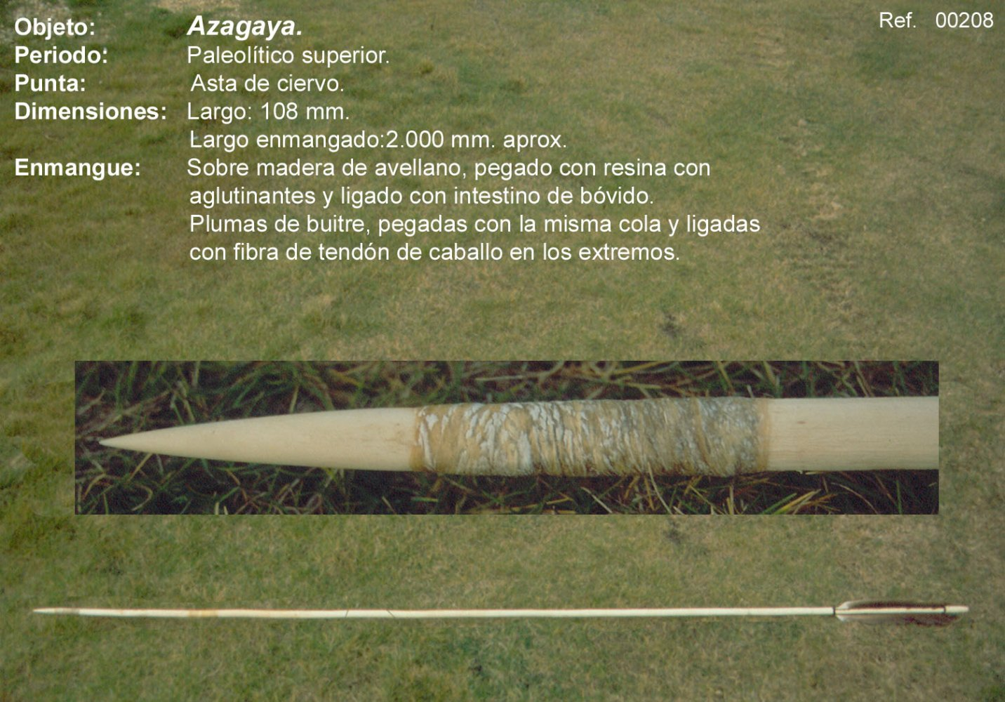 00208 Azagaya-asta