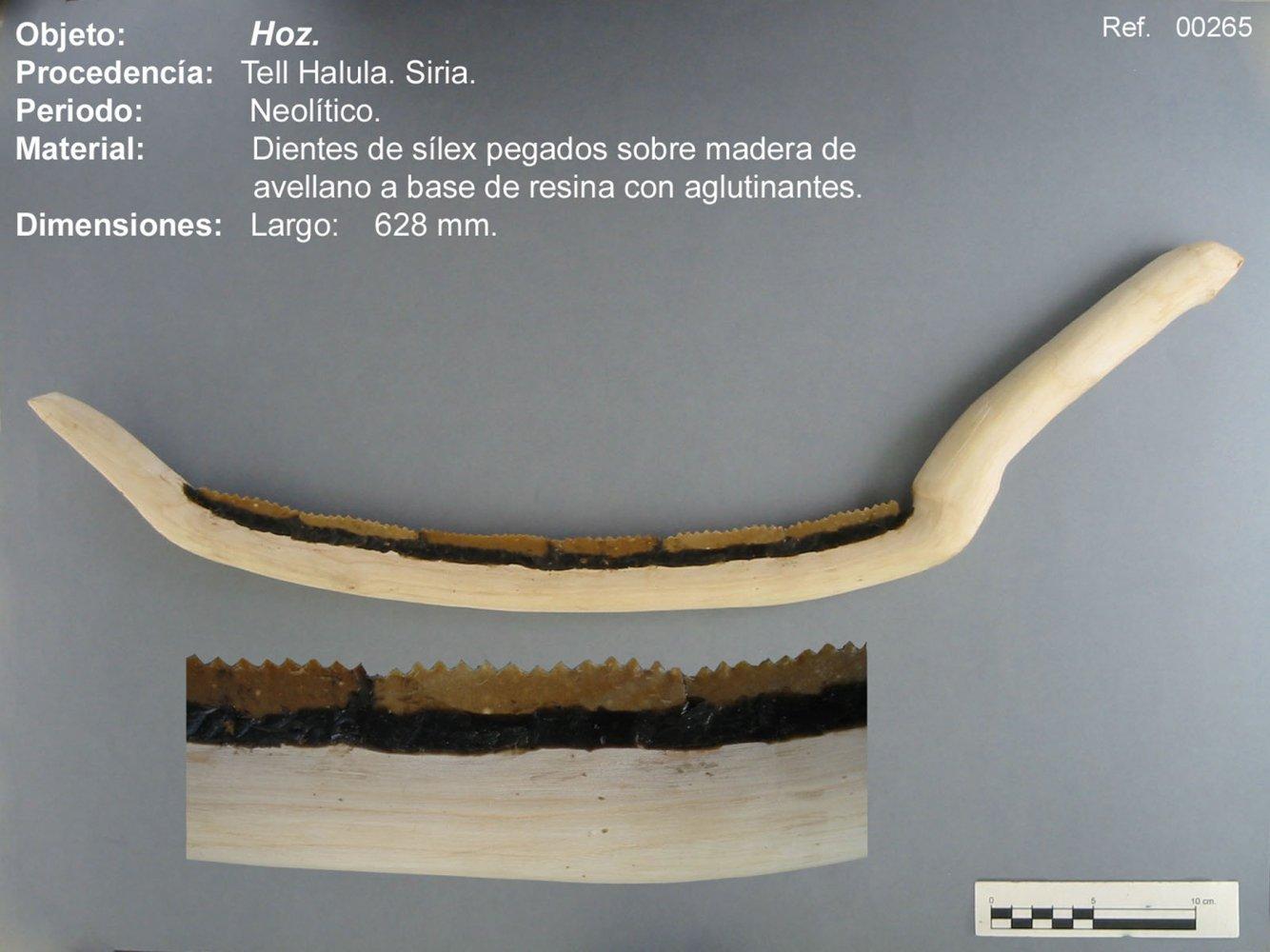 00265 Hoz de Tell Halula